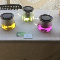 Galeria de Fotos - Biofusão