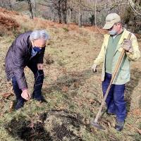 Galeria de Fotos - Município Assinala Dia da Floresta Autóctone com plantação de árvores