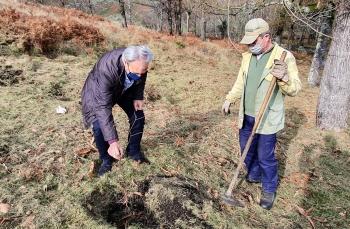 Município Assinala Dia da Floresta Autóctone com plantação de árvores -