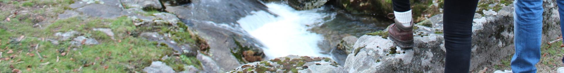Imagem de Fundo